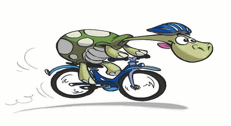 Radfahrer.jpg